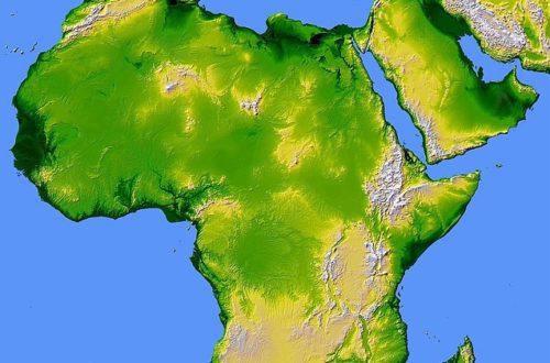 Article : Ma famille Afrique